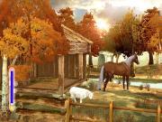 Horsez. Школа верховой езды