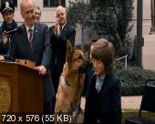Крутой пес / Cool Dog (2010) DVD5+DVDRip(1400MB+700MB)