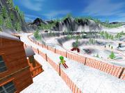 Веселые лыжи (2010)