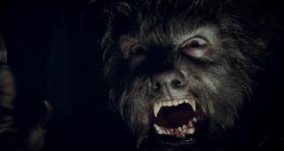 Человек-волк  (2010) HDRip