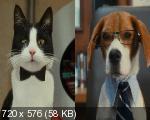 Кошки против собак: Месть Китти Галор / Cats & Dogs: The Revenge of Kitty Galore (2010/HDRip/700Mb/1400Mb/DVD5)