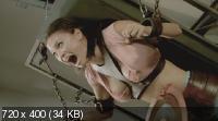 Пила 7 / Saw 7 (2010) DVD9 + DVD5 + DVDRip 1400/700 Mb