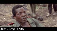 ����� �������� / White Material (2009) BD Remux + BDRip 1080p/720p + HDRip 1400/700 Mb