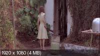 Белый материал / White Material (2009) BD Remux + BDRip 1080p/720p + HDRip 1400/700 Mb