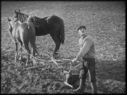 ������ ����� (1926), ����� ���������� (1927), ��������� (1927, 1973) DVD9