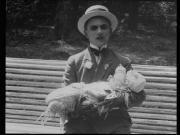 Ягодка любви (1926), Сумка дипкурьера (1927), Звенигора (1927, 1973) DVD9
