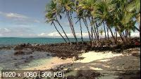 Гавайи: Симфония островов / Hawaii: An Island Symphony (2007) Blu-ray