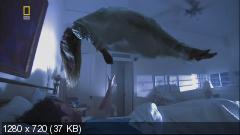 National Geographic: Реальность или фантастика? / Is it real? 13 фильмов (2006) HDTVRip 720p