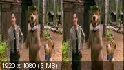 Медведь Йоги 3Д / Yogi Bear 3D Горизонтальная анаморфная